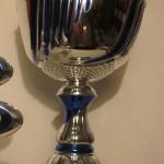 Pokal VM